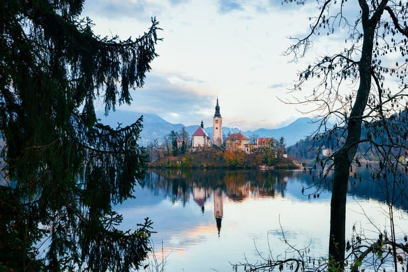 Lac et château saignés beau par paysage en Slovénie photos stock
