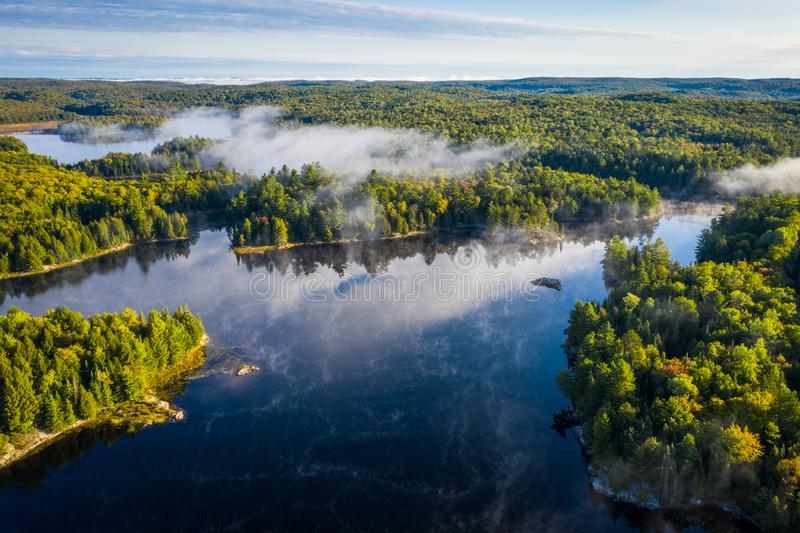 Lac et forêt brumeux d'une vue courbe photo libre de droits