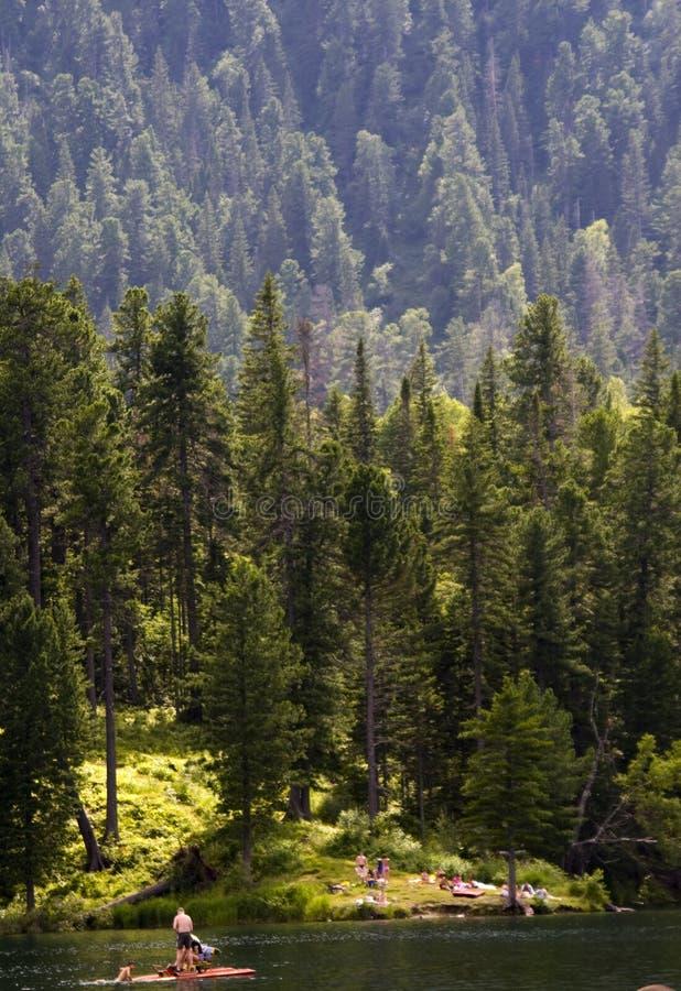 Lac et forêt Tiaga photos libres de droits