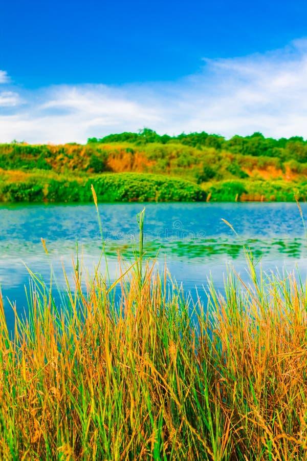 Lac et nature images stock