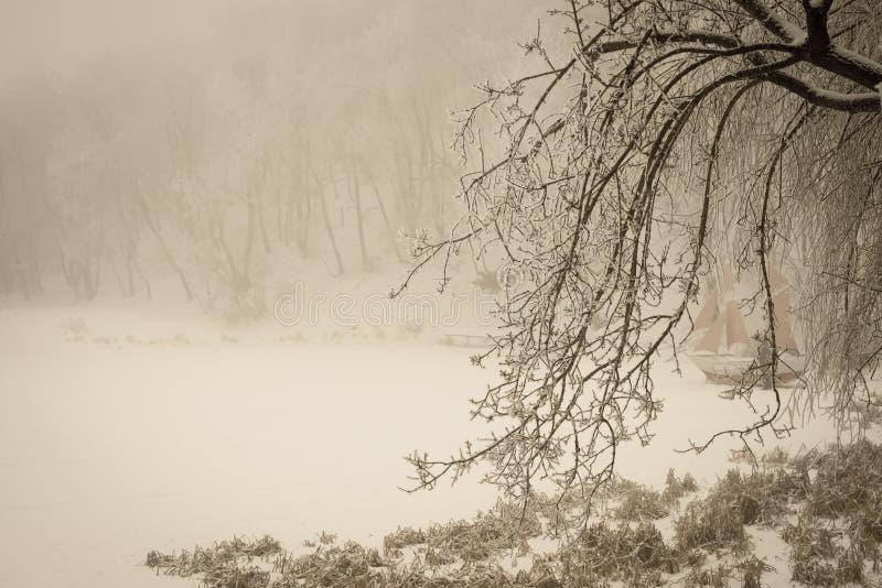 Lac et pélerin brumeux d'hiver avec couvrir les branches photo stock