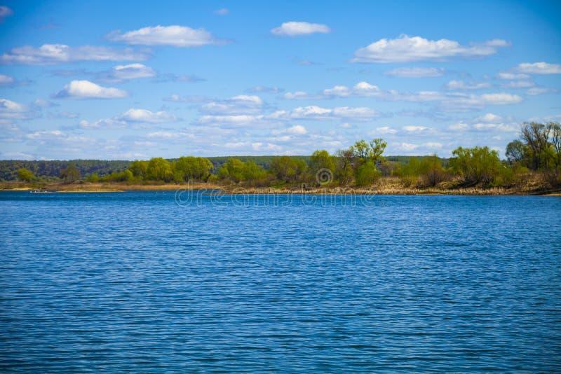Lac et pr? vert avec des arbres photos libres de droits