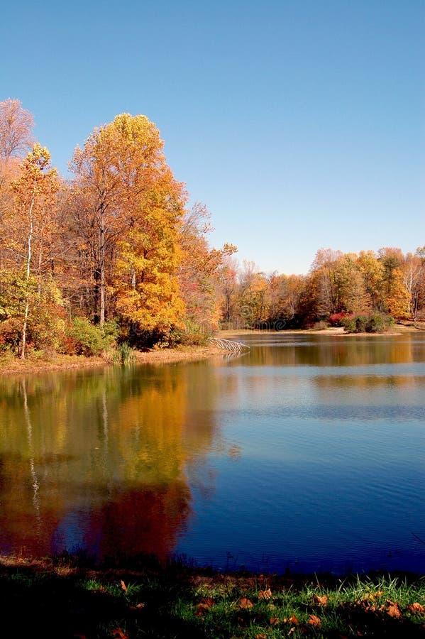 Lac fall photo libre de droits