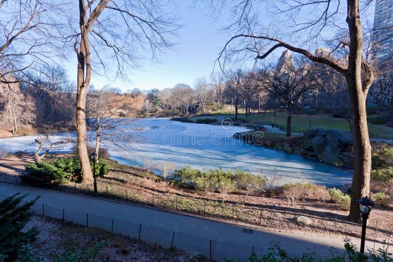 Lac figé dans Central Park photographie stock