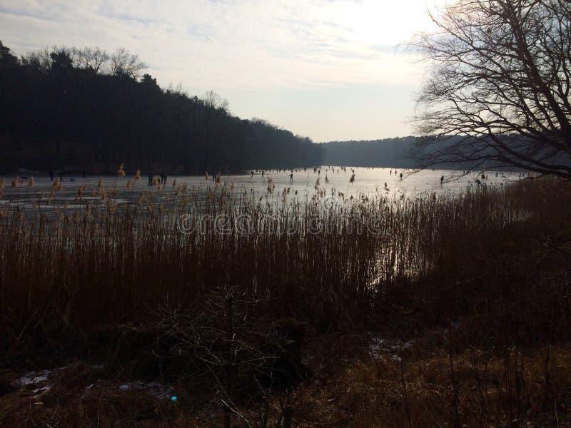 Lac figé en hiver photos stock