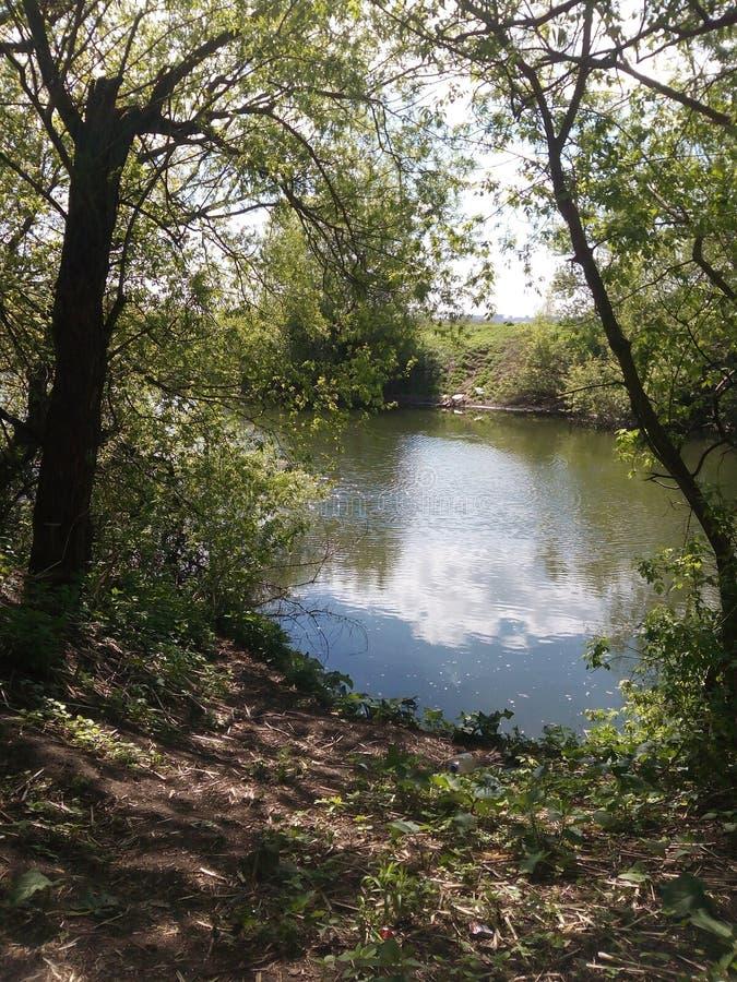 lac, forêt, aqua, paysage photo stock