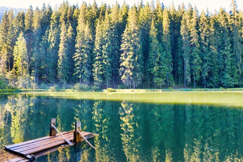 Lac forest dans les montagnes photographie stock libre de droits