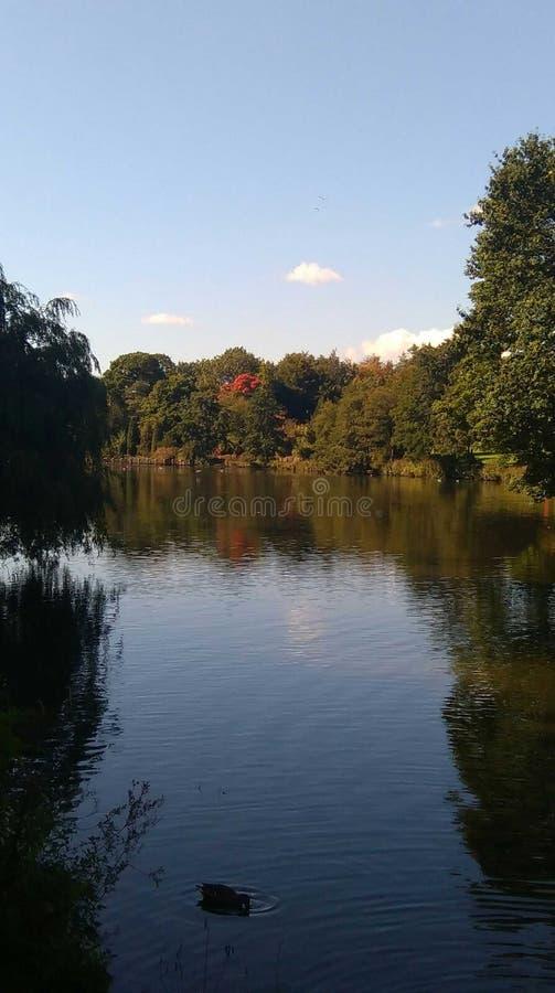 Lac Highfields, Nottingham photos libres de droits