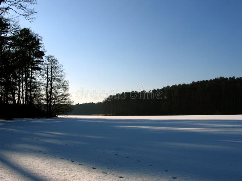 Download Lac ice. photo stock. Image du ciel, forêt, neige, arbres - 71862