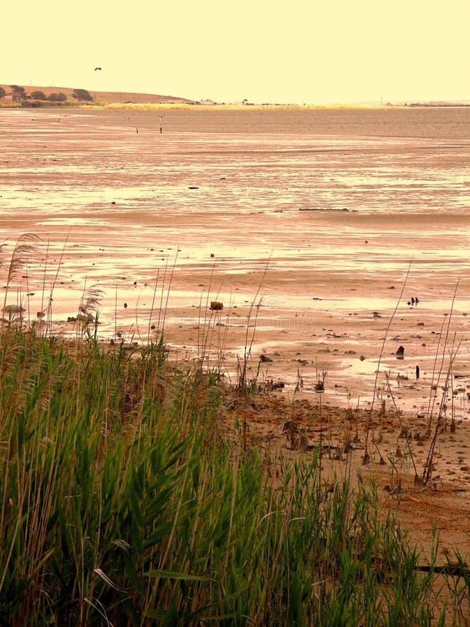 Lac inférieur Albert images stock