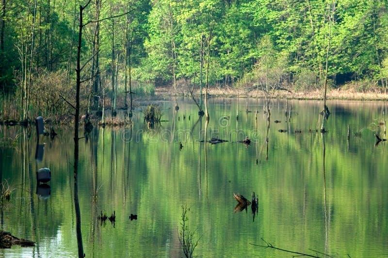 Lac Isaac Photo libre de droits