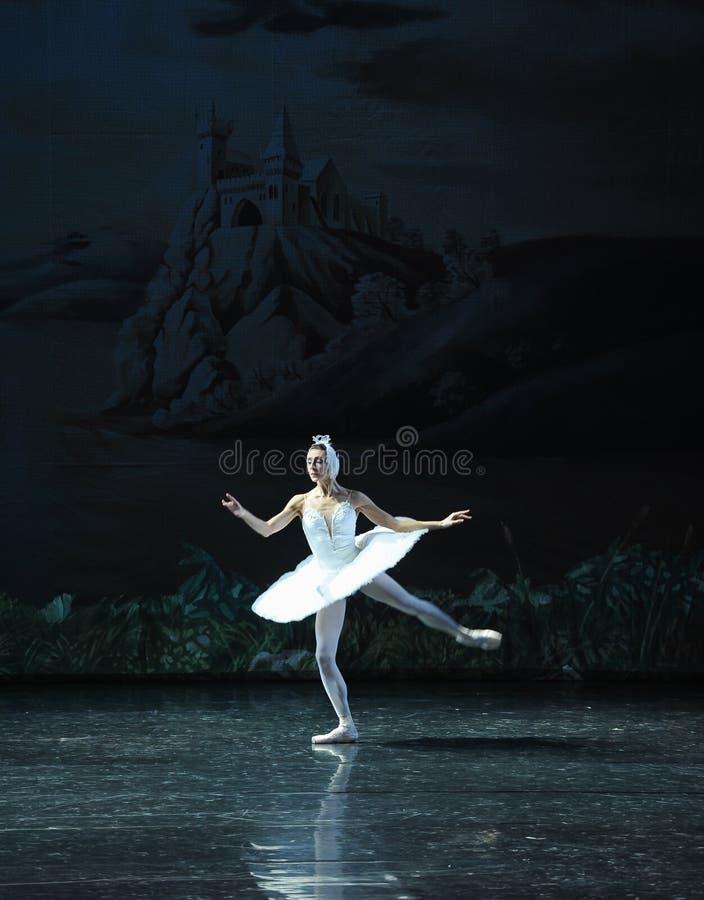 Lac isolé swan de Lakeside-ballet de cygne de cygne-Le photos stock