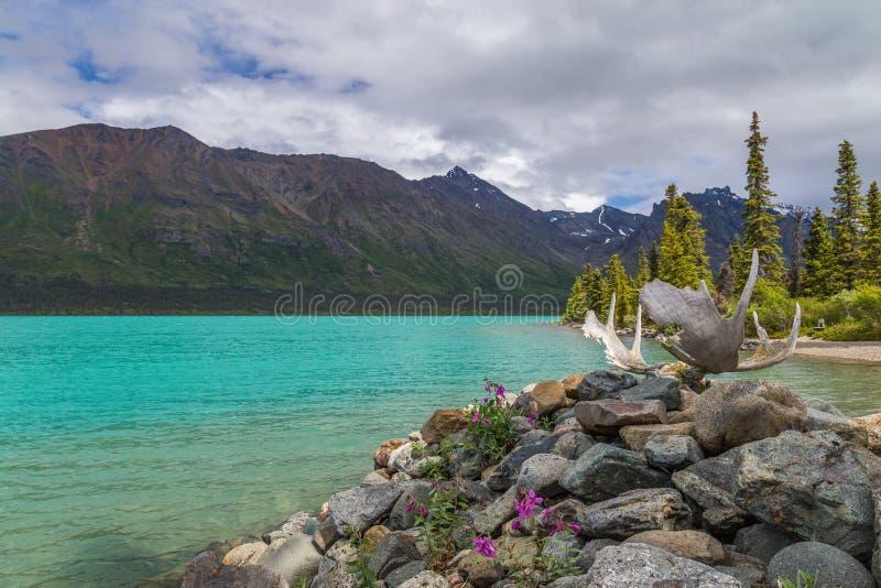 Lac jumeau supérieur, andouillers dans le premier plan photos stock