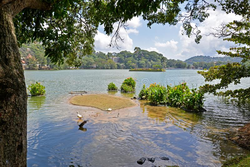 Lac kandy, Kandy, Sri Lanka image libre de droits