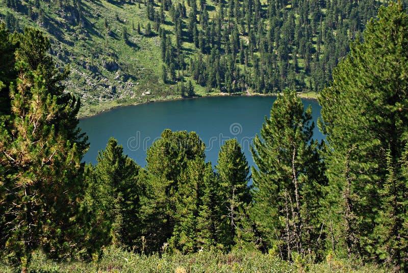 Lac Karacol, Altai, Russie mountain photo stock