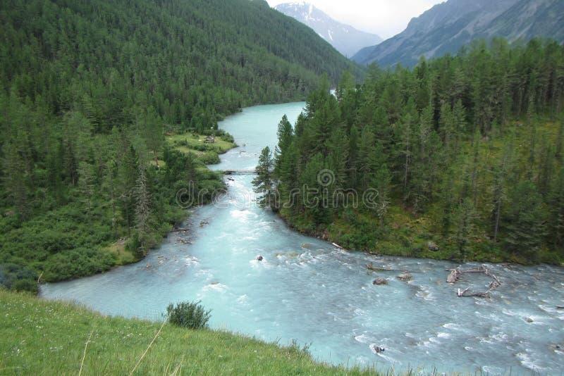 Lac Kucherlinskoe russia Gorniy l'Altay images libres de droits