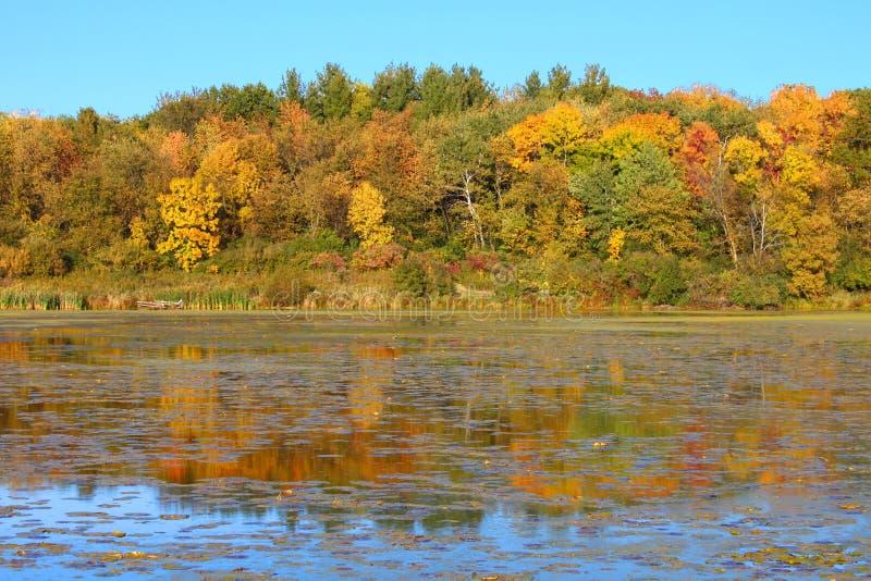 Lac l'Illinois du nord Olson photo libre de droits