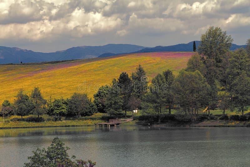 Lac landscape photos libres de droits