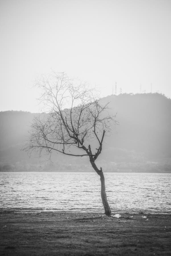 Lac landscape en Thaïlande image stock