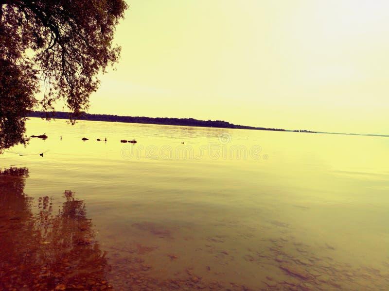 Lac le soir photos libres de droits