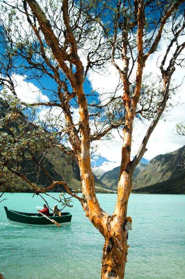 Lac Llanganuco (Chinancocha) image libre de droits