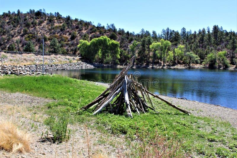 Lac lynx, secteur de garde forestière de Bradshaw, Prescott National Forest, état de l'Arizona, Etats-Unis images stock