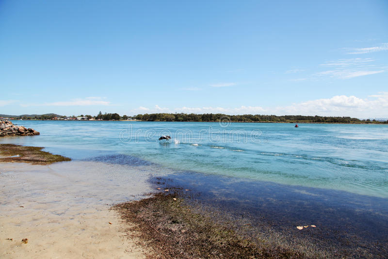 Lac Macquarie, Australie view de lac @ images libres de droits