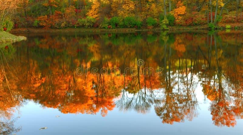 Lac mirror en automne images libres de droits