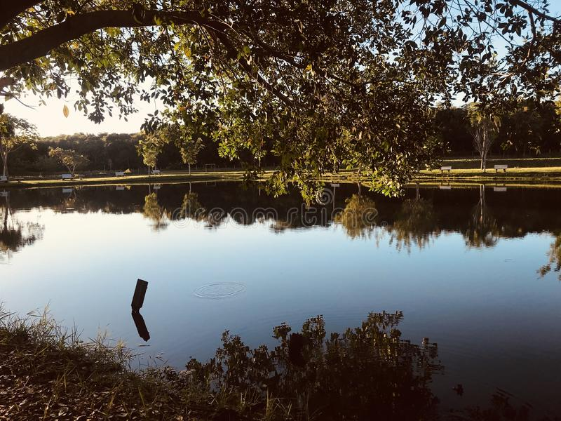Lac mirror photo libre de droits