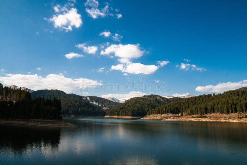 Lac mountain dans la forêt image stock