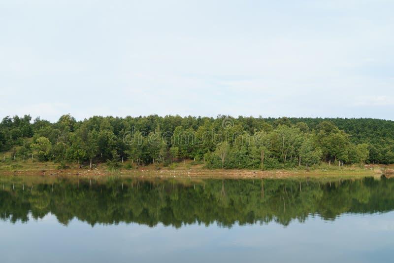 Lac nature avec la réflexion verte d'arbres photos stock