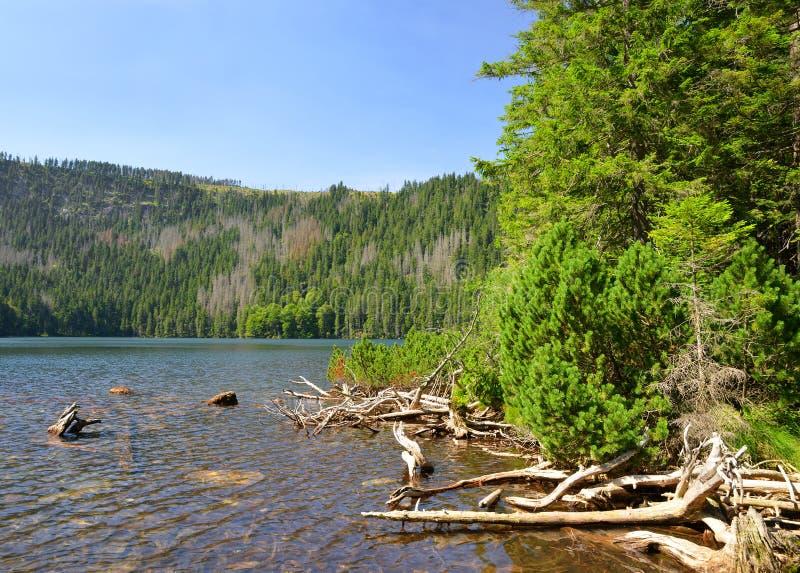 Lac noir image stock