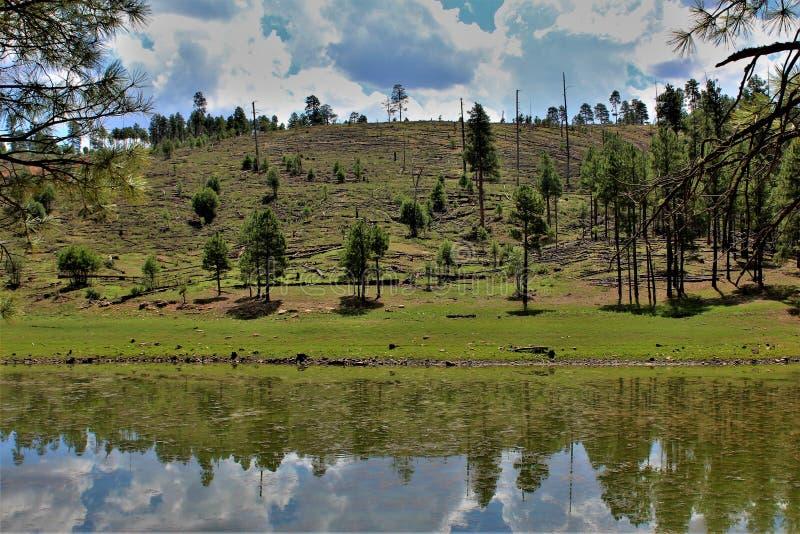 Lac noir canyon, le comté de Navajo, Arizona, Etats-Unis, réserve forestière d'Apache Sitegreaves photographie stock libre de droits