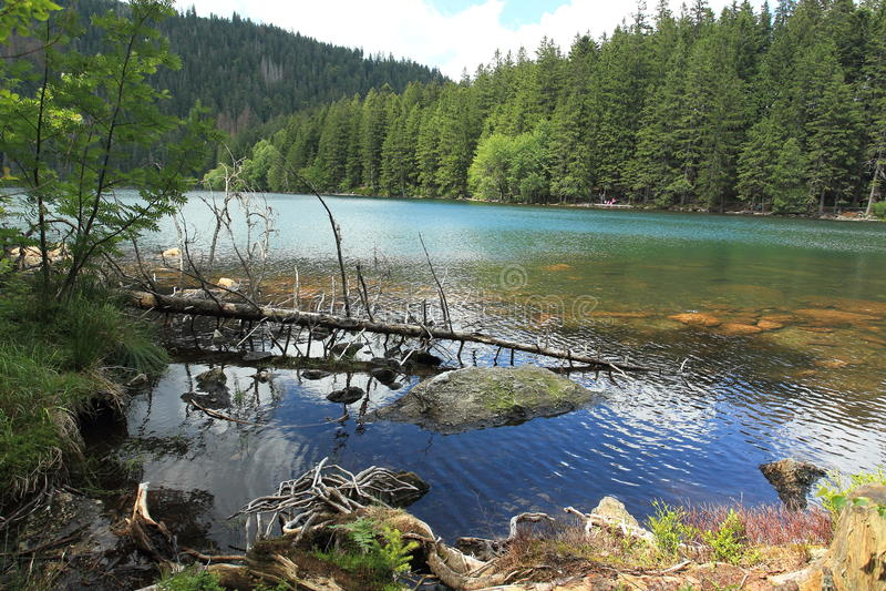 Lac noir dans la forêt de Bohème photographie stock