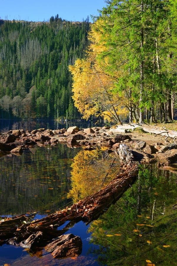 Lac noir dans la République Tchèque photo libre de droits