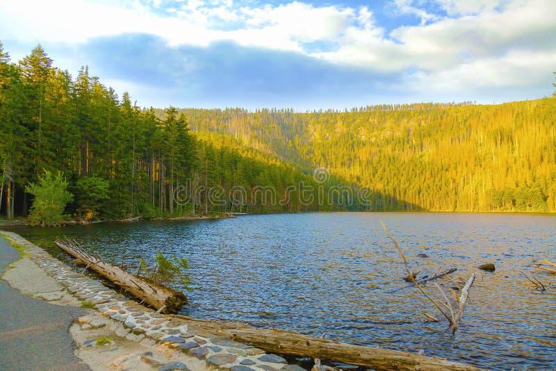 Lac noir en parc national Sumava, République Tchèque images libres de droits