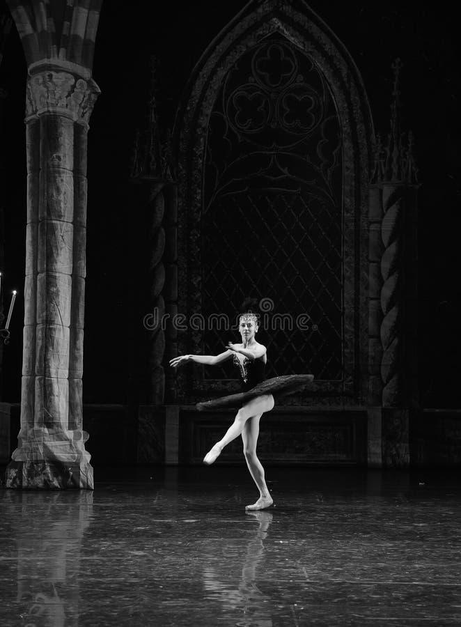 Lac noir et blanc swan de Ballet-ballet photo libre de droits