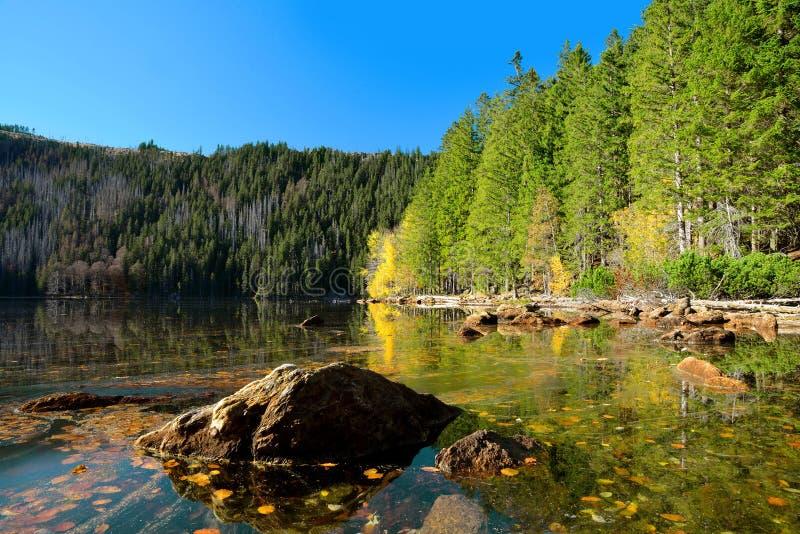 Lac noir, plus grand lac naturel en parc national Sumava photo libre de droits