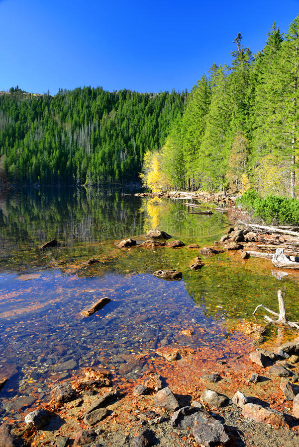 Lac noir - République Tchèque photos libres de droits