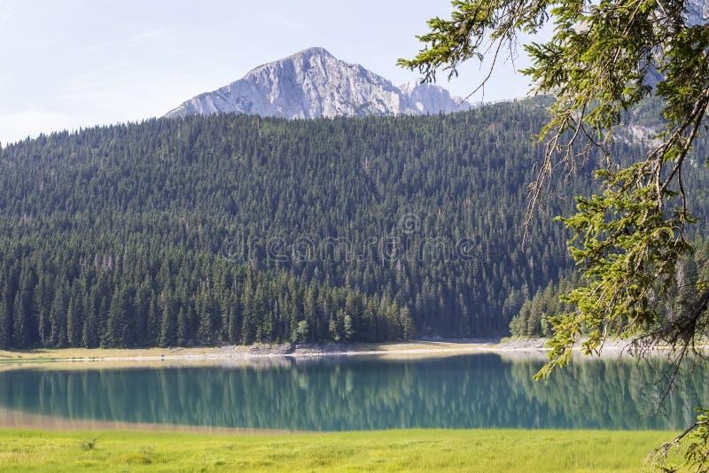 Lac noir sur la montagne de Durmitor dans Monténégro photo libre de droits