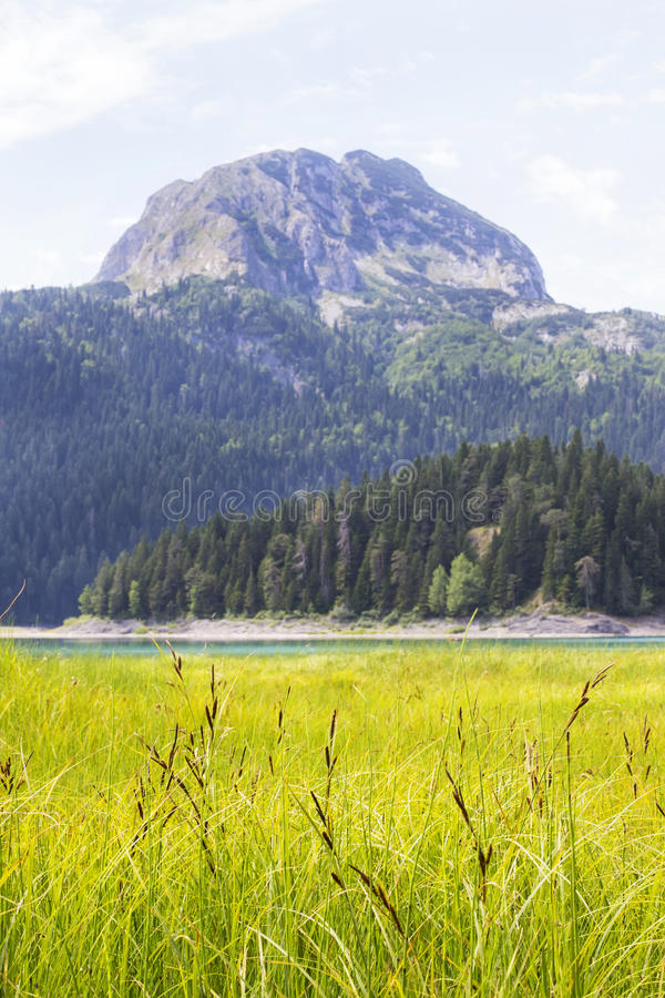 Lac noir sur la montagne de Durmitor dans Monténégro photographie stock
