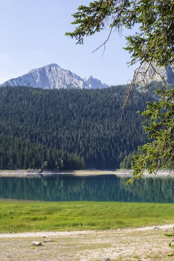 Lac noir sur la montagne de Durmitor dans Monténégro images libres de droits