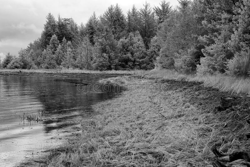 Lac nordique image stock