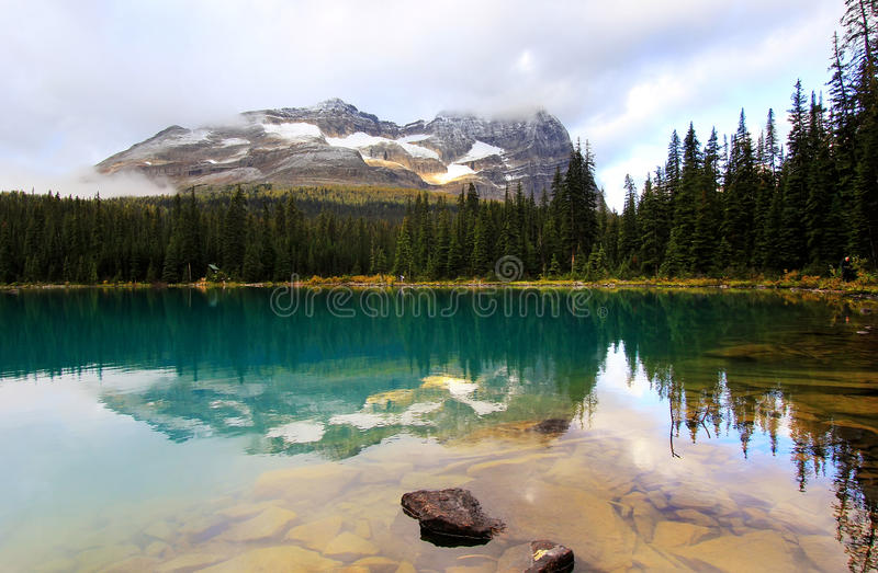 Lac O'Hara, Yoho National Park, Canada photo libre de droits