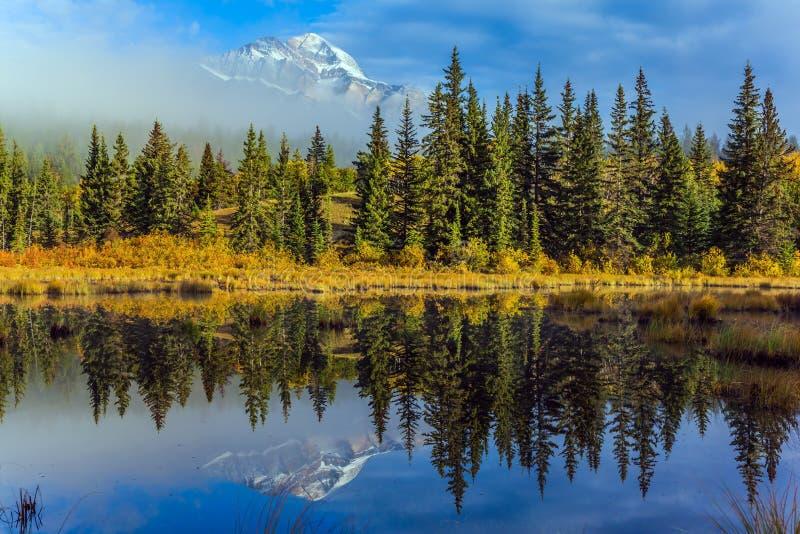 Lac patricia photo libre de droits