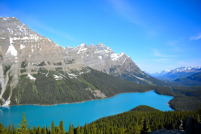 Lac Peyto image stock