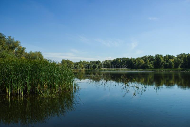 Lac photograph en nature images libres de droits