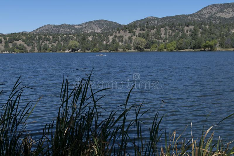 Lac Roberts, Nouveau Mexique, ligne de rivage photo stock