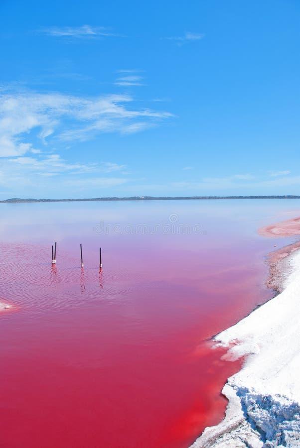 Lac rose, Australie occidentale photos libres de droits