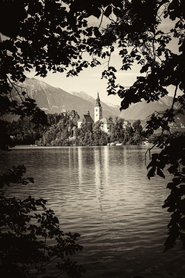 Lac saigné Beau lac de montagne avec la petite église de pèlerinage photos libres de droits